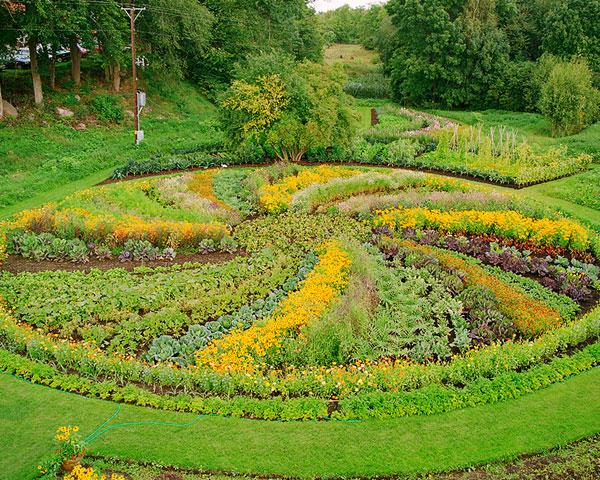 Tommarps trädgård